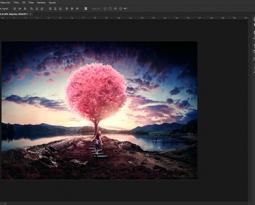 Photoshop niveau 1 – Philippeville