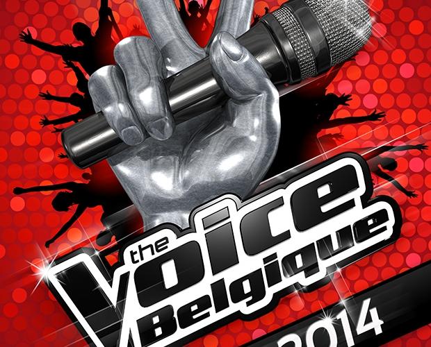 Références professionnelles: Affiche – The Voice – tour 2014