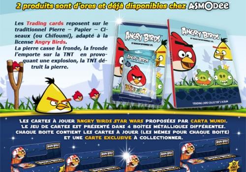 Références professionnelles: Emailing – Angry Birds